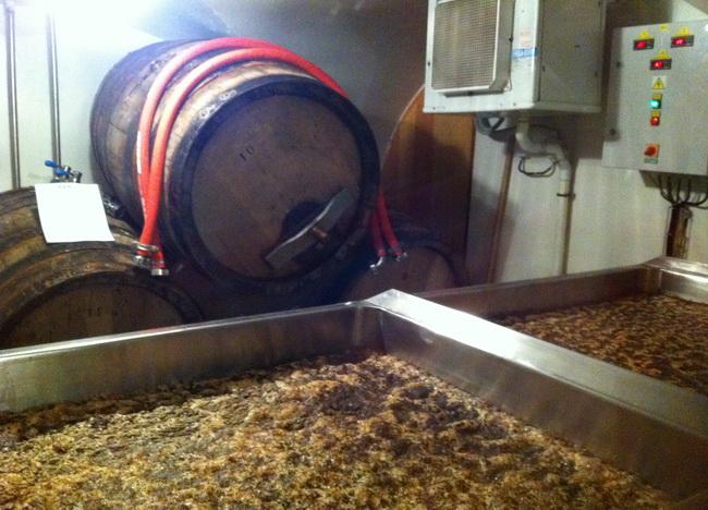 Fermenta, fermenta, fermenta...